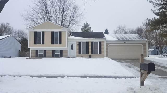 805 Tanglewood Drive, Algonquin, IL 60102 (MLS #10649068) :: Angela Walker Homes Real Estate Group