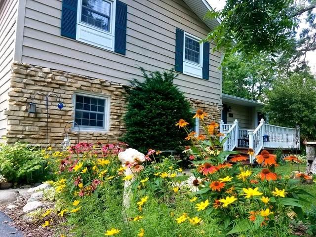 526 Stevens Court, Sleepy Hollow, IL 60118 (MLS #10649138) :: Knott's Real Estate Team