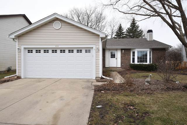 808 Galleon Lane, Elk Grove Village, IL 60007 (MLS #10649234) :: Property Consultants Realty