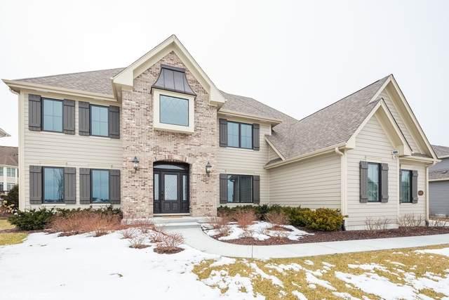 3683 Bellamere Lane, Elgin, IL 60124 (MLS #10649237) :: Helen Oliveri Real Estate