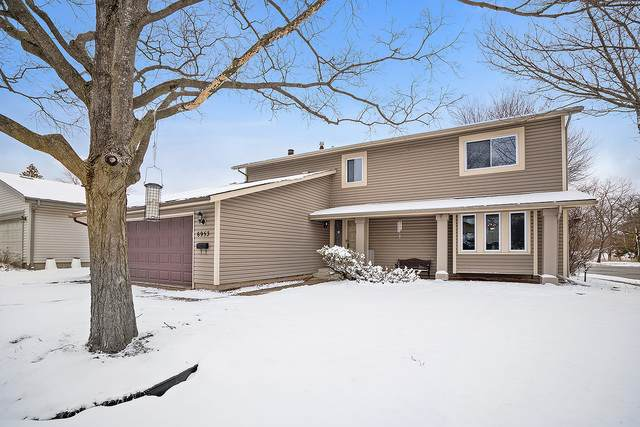 6953 Sun Drop Avenue, Woodridge, IL 60517 (MLS #10649320) :: Touchstone Group