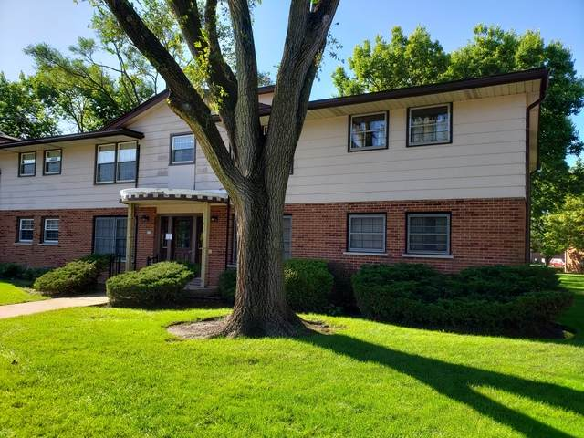 212 Washington Square A, Elk Grove Village, IL 60007 (MLS #10649677) :: Helen Oliveri Real Estate