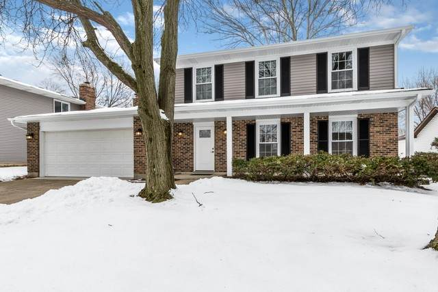 995 Freeman Road, Hoffman Estates, IL 60192 (MLS #10649712) :: Property Consultants Realty