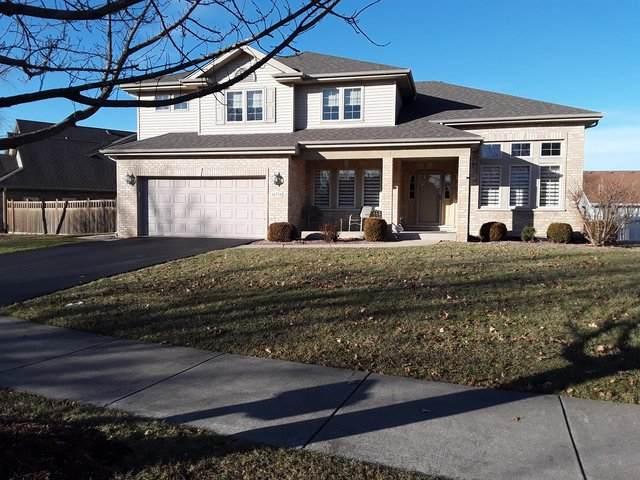 16724 W Springview Drive, Lockport, IL 60441 (MLS #10649875) :: Ryan Dallas Real Estate