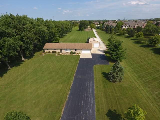 22919 S Scheer Road, Frankfort, IL 60423 (MLS #10650026) :: Angela Walker Homes Real Estate Group