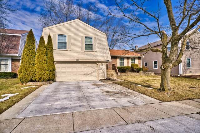 990 Knollwood Drive, Buffalo Grove, IL 60089 (MLS #10650141) :: Helen Oliveri Real Estate