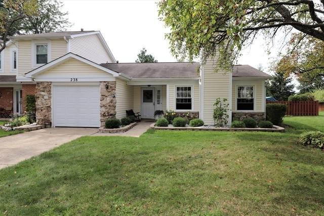 238 Stanyon Lane, Bloomingdale, IL 60108 (MLS #10650182) :: Janet Jurich