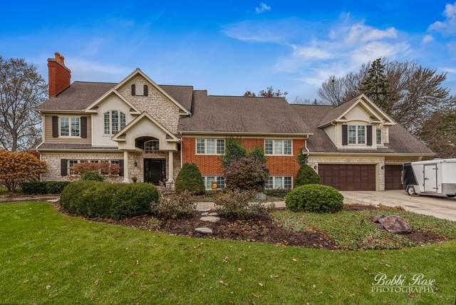 916 S Elm Street, Mount Prospect, IL 60056 (MLS #10650227) :: Helen Oliveri Real Estate