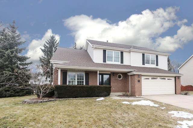 1195 Berkley Road, Lake Zurich, IL 60047 (MLS #10650323) :: Helen Oliveri Real Estate