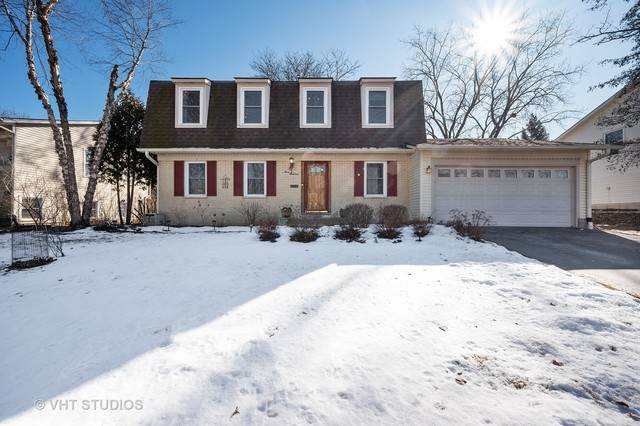 300 Chicory Lane, Buffalo Grove, IL 60089 (MLS #10650369) :: Helen Oliveri Real Estate