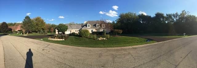 6 Oneida Lane, Hawthorn Woods, IL 60047 (MLS #10650610) :: Helen Oliveri Real Estate