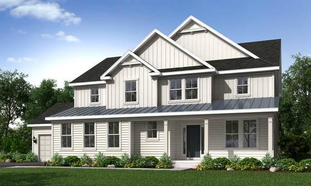 24425 N Blue Aster Lot #65 Lane, Lake Barrington, IL 60010 (MLS #10650675) :: Helen Oliveri Real Estate