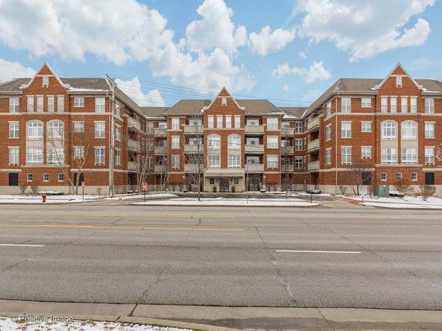 77 N Quentin Road #310, Palatine, IL 60067 (MLS #10650801) :: Property Consultants Realty