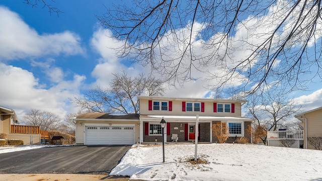 770 Suffolk Court, Hoffman Estates, IL 60192 (MLS #10650950) :: Property Consultants Realty