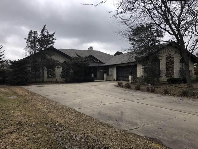 117 Saddle Brook Drive, Oak Brook, IL 60523 (MLS #10650957) :: Helen Oliveri Real Estate