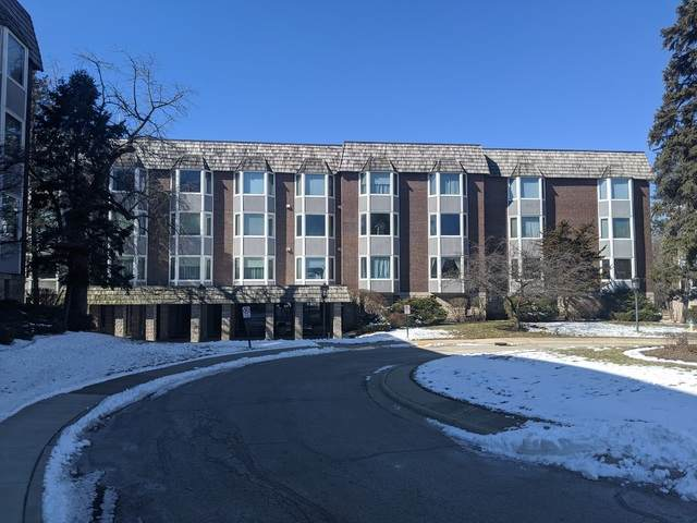 2600 Windsor Mall Court 1F, Park Ridge, IL 60068 (MLS #10651572) :: Property Consultants Realty