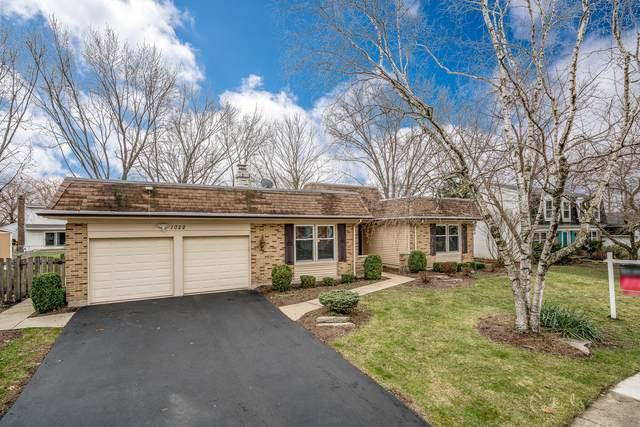 1022 W Skylark Drive, Palatine, IL 60067 (MLS #10653190) :: Jacqui Miller Homes