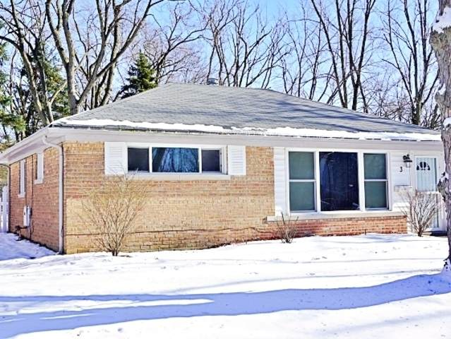 3 Mantua Court, Park Forest, IL 60466 (MLS #10653831) :: Angela Walker Homes Real Estate Group