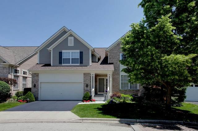 1859 Trevino Terrace, Vernon Hills, IL 60061 (MLS #10653941) :: Ryan Dallas Real Estate