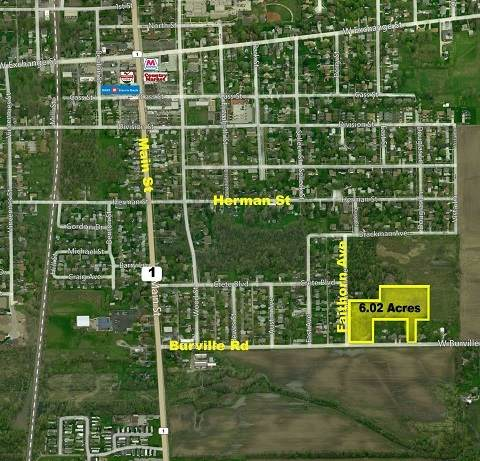 1601 Faithorn Avenue, Crete, IL 60417 (MLS #10655312) :: Property Consultants Realty