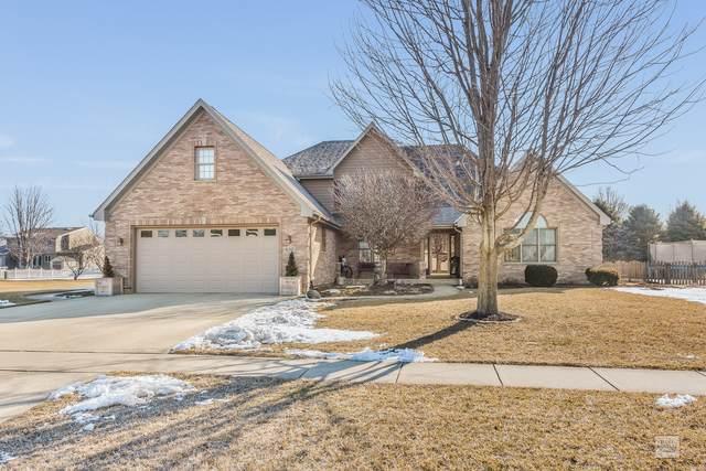 610 Meadow Lane, Hinckley, IL 60520 (MLS #10656035) :: Ani Real Estate