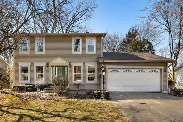 310 S Hickory Avenue, Bartlett, IL 60103 (MLS #10656157) :: Lewke Partners