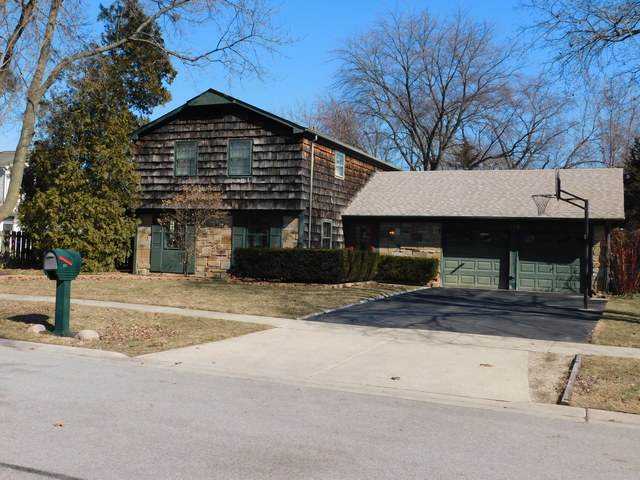 293 Indian Hill Drive, Buffalo Grove, IL 60089 (MLS #10656189) :: Angela Walker Homes Real Estate Group