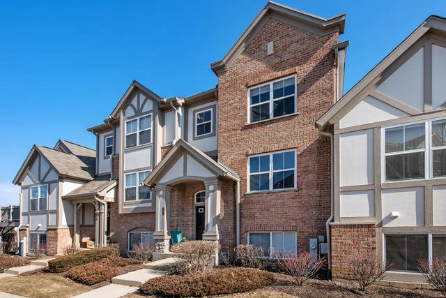 85 Rosehall Drive #85, Lake Zurich, IL 60047 (MLS #10657614) :: Helen Oliveri Real Estate