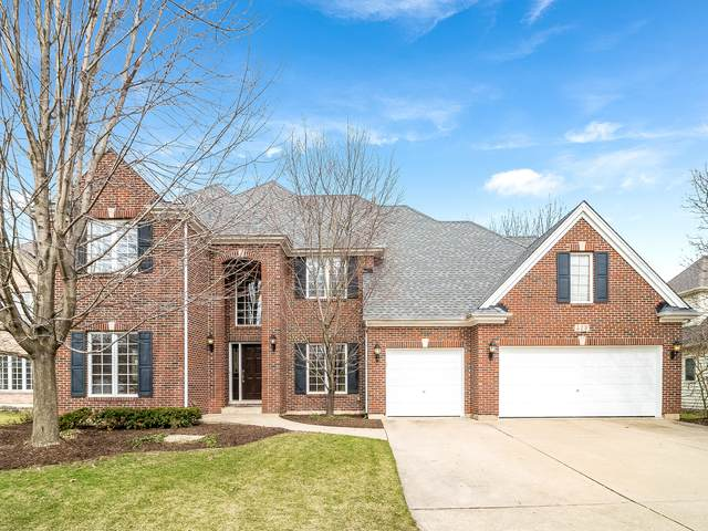 419 Verbena Court, Naperville, IL 60565 (MLS #10658563) :: Property Consultants Realty