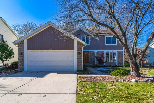 5010 N Tamarack Drive, Hoffman Estates, IL 60010 (MLS #10658816) :: Century 21 Affiliated