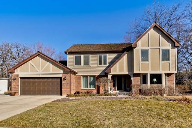 218 Alpine Drive, Lake Zurich, IL 60047 (MLS #10658904) :: Helen Oliveri Real Estate