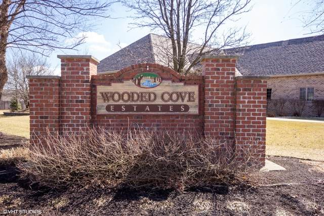 21151 S Wooded Cove Drive, Elwood, IL 60421 (MLS #10659294) :: Helen Oliveri Real Estate