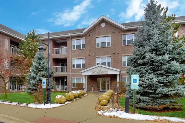 10 N Gilbert Street #115, South Elgin, IL 60177 (MLS #10659745) :: Touchstone Group