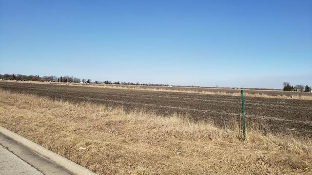 Lot#30 Lot#30, Gardner, IL 60424 (MLS #10660197) :: Property Consultants Realty
