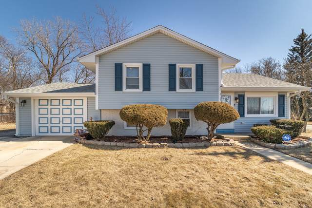 21951 Balmoral Drive, Richton Park, IL 60471 (MLS #10661476) :: Property Consultants Realty