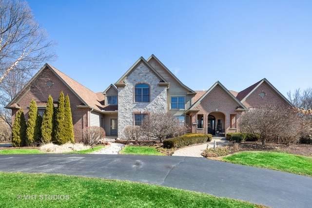 6809 Colonel Holcomb Drive, Crystal Lake, IL 60012 (MLS #10661704) :: John Lyons Real Estate