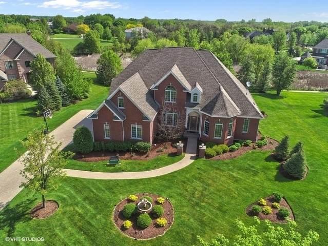 22340 N Prairie Court, Kildeer, IL 60047 (MLS #10661932) :: Helen Oliveri Real Estate