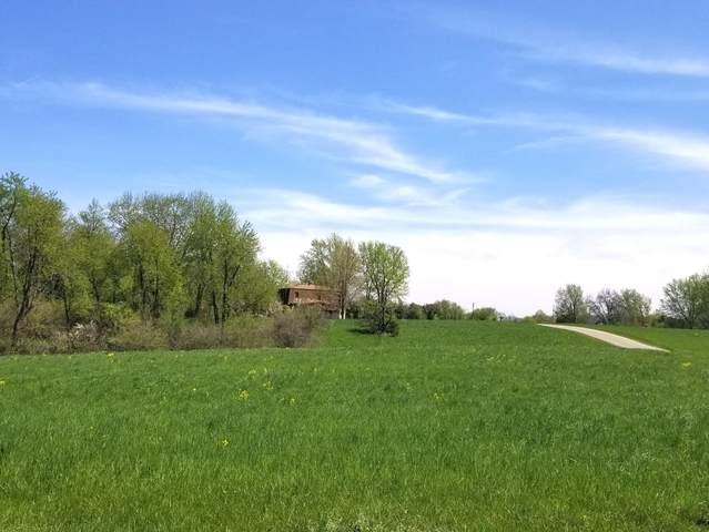 Lot 1043 Hidden Valley Drive, Varna, IL 61375 (MLS #10662631) :: Ryan Dallas Real Estate