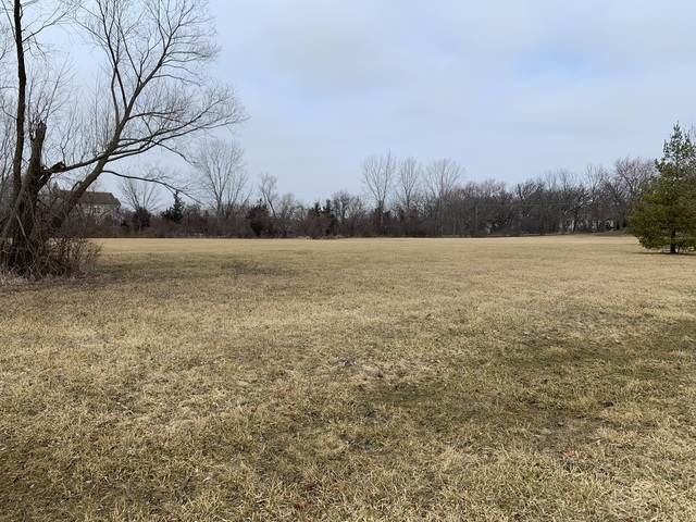 Lot 3 Pheasant Drive, Lakewood, IL 60014 (MLS #10662908) :: The Dena Furlow Team - Keller Williams Realty