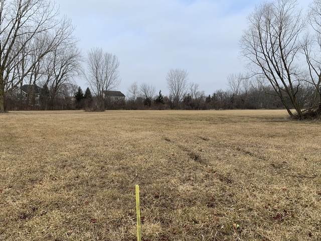 Lot 4 Pheasant Drive, Lakewood, IL 60014 (MLS #10662909) :: The Dena Furlow Team - Keller Williams Realty
