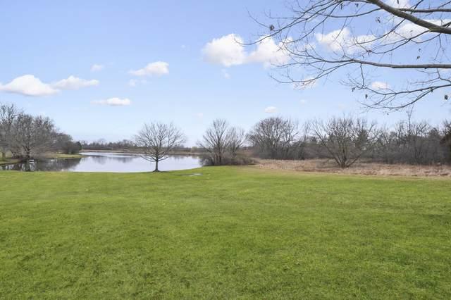 13 Pacer Trail, South Barrington, IL 60010 (MLS #10664138) :: Helen Oliveri Real Estate