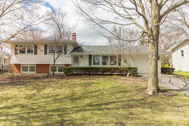 1125 Emerald Drive, Naperville, IL 60540 (MLS #10664385) :: Angela Walker Homes Real Estate Group