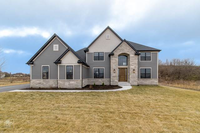 979 Redbud Lane, Sugar Grove, IL 60554 (MLS #10664913) :: Property Consultants Realty