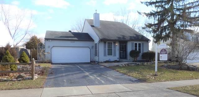 1205 Greenridge Avenue, Algonquin, IL 60102 (MLS #10666163) :: John Lyons Real Estate