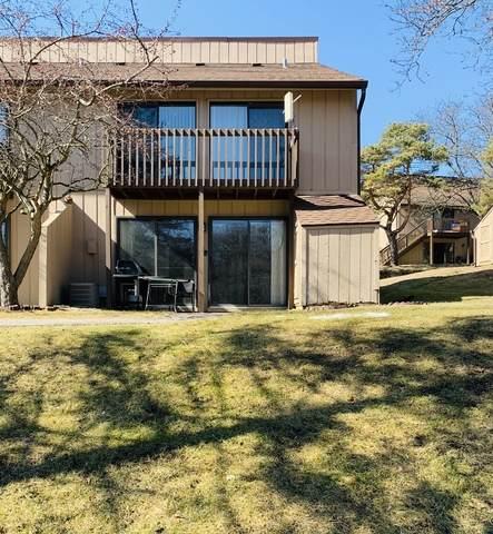25 Jamaica Colony Street #1, Fox Lake, IL 60020 (MLS #10666317) :: John Lyons Real Estate