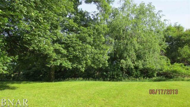 Lot 53 Oak Ridge Estates, El Paso, IL 61738 (MLS #10666432) :: Property Consultants Realty