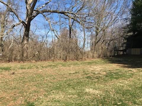 22 Riverview Terrace, WHITE HEATH, IL 61884 (MLS #10666965) :: Century 21 Affiliated