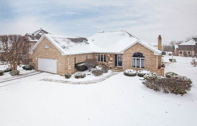 227 Whispering Lake Drive, Palos Park, IL 60464 (MLS #10667109) :: The Wexler Group at Keller Williams Preferred Realty