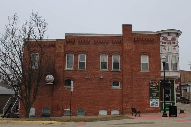 100 Main Street, Elizabeth, IL 61028 (MLS #10667385) :: Helen Oliveri Real Estate