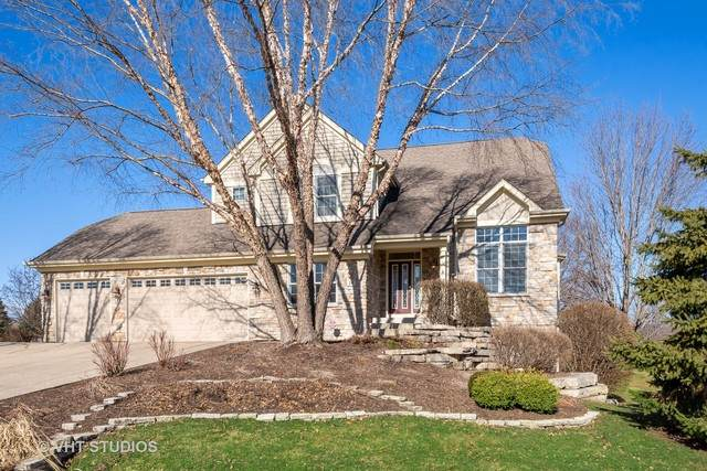 14 Lorraine Court, Cary, IL 60013 (MLS #10667729) :: Property Consultants Realty